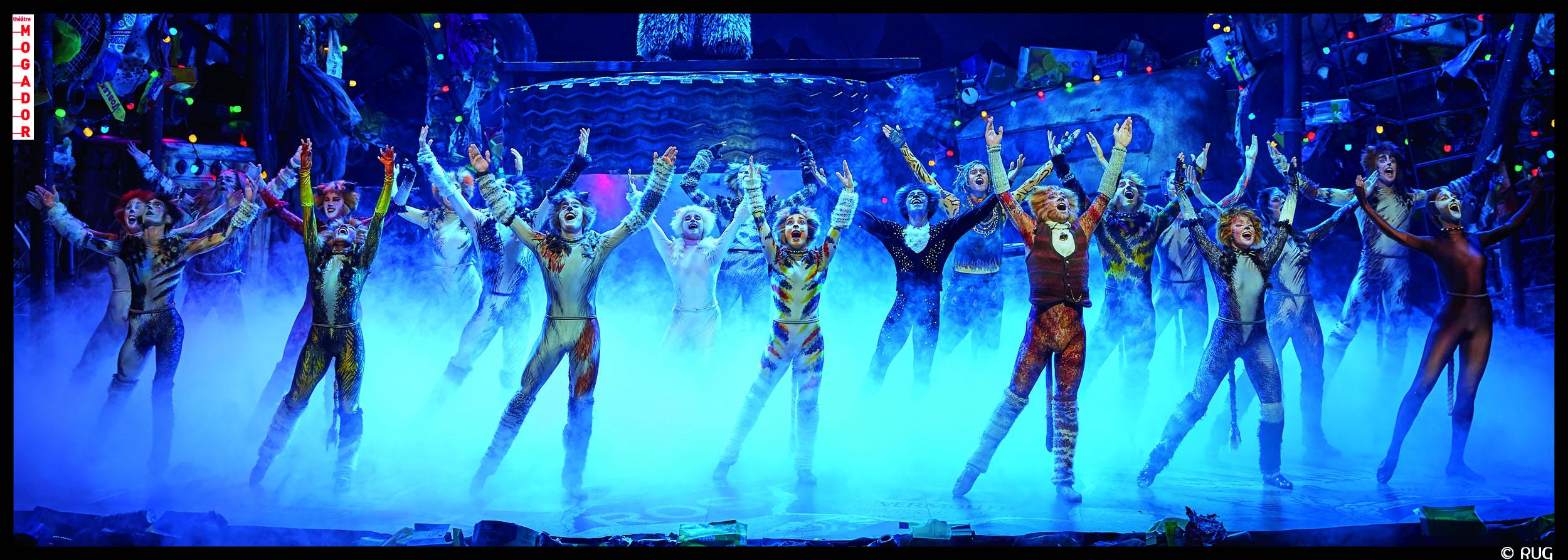 CATS MusicalMogador, ParisStage Entertainment Franc