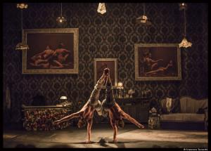 elephant_in_the_room_cirqueleroux_bobino_francescatorracchi_loeildoliv