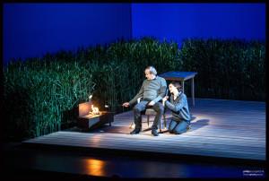 tu te souviendras de moi_2_Chesnais_theatre de Paris_©Philipducap_@loeildoliv