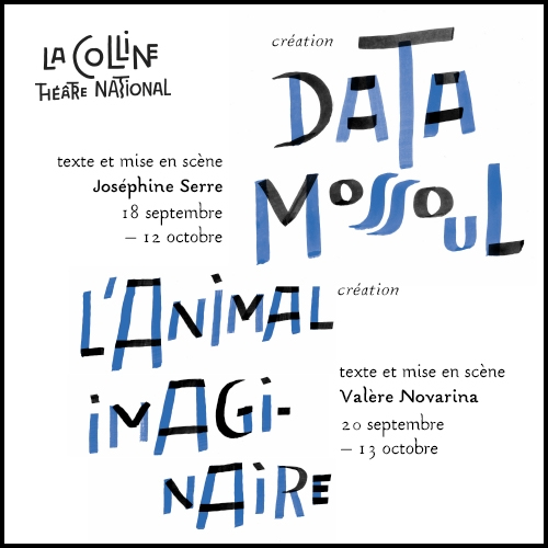 il-olivier-pave-Data-Animal.jpg