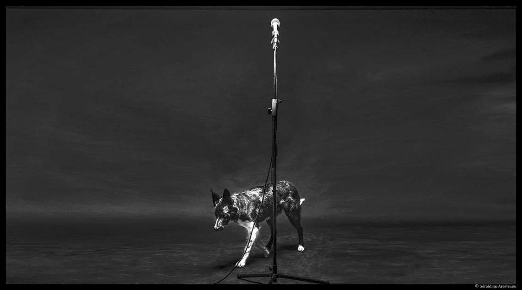 Des paroles impossibles de Yoann Bourgeois. Nuit du Cirque. © Géraldine Aresteanu