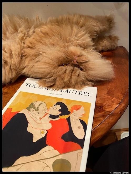 Toulouse-Lautrec par ©Emeline Bayart