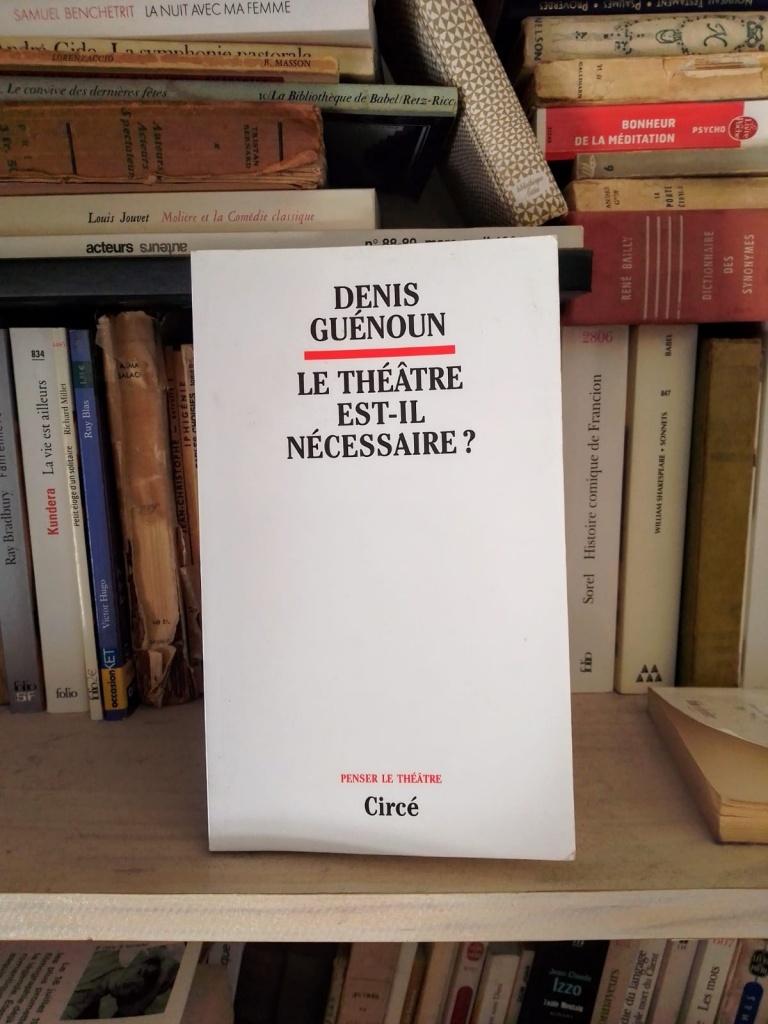 Le théâtre est-il nécessaire ? de Denis Guénoun © Anthony Audoux