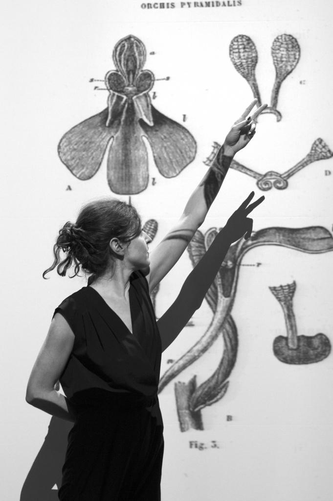 De la sexualité des orchidées de Sofia Teillet ©Anna Basile