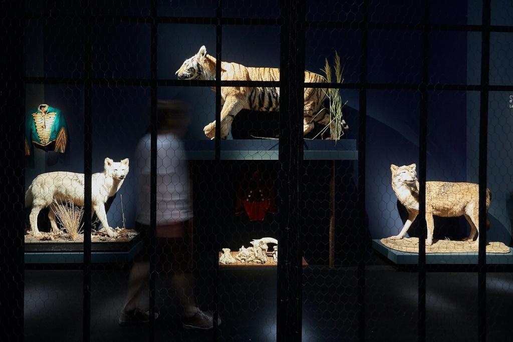 Trouble fête, collections curieuses et choses inquiètes de Macha Makeïeff Musée des Tapisseries. © Christophe Raynaud de Lage