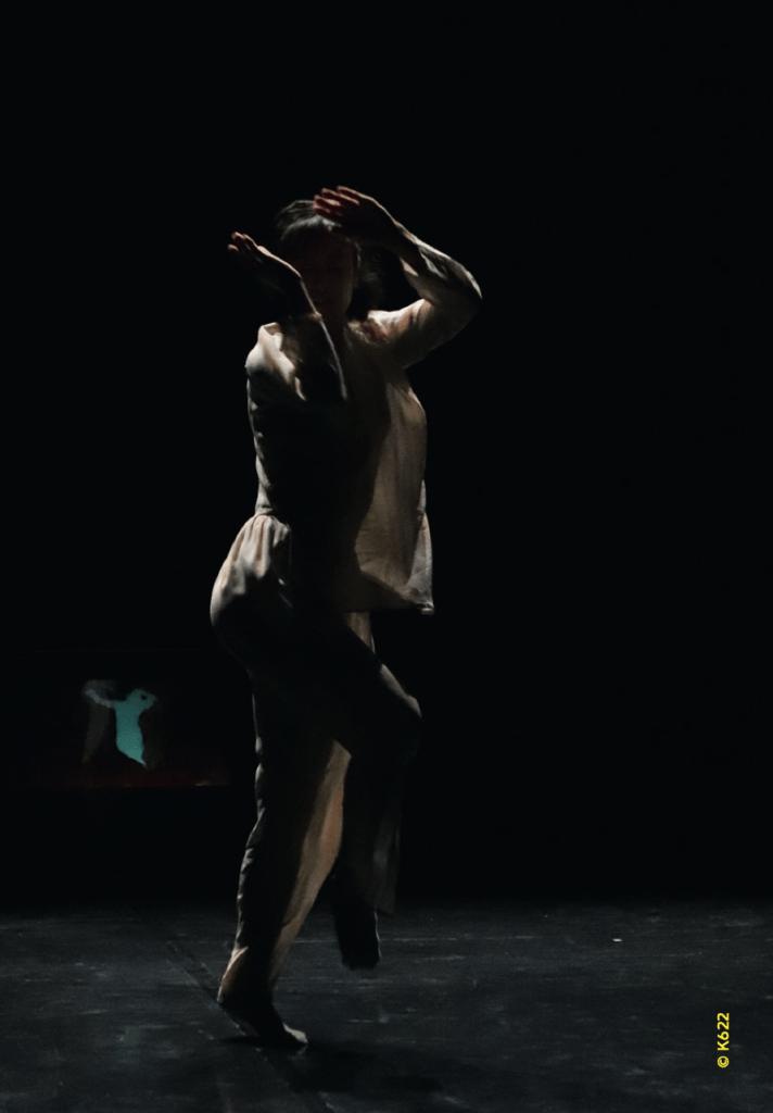 Programme #3 La belle scène saint-denis. An H to B & Nothing but Cie K622 • Mié Coquempot ©K622